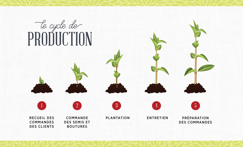 Cycle-de-production-fleurs-plantes-jardin