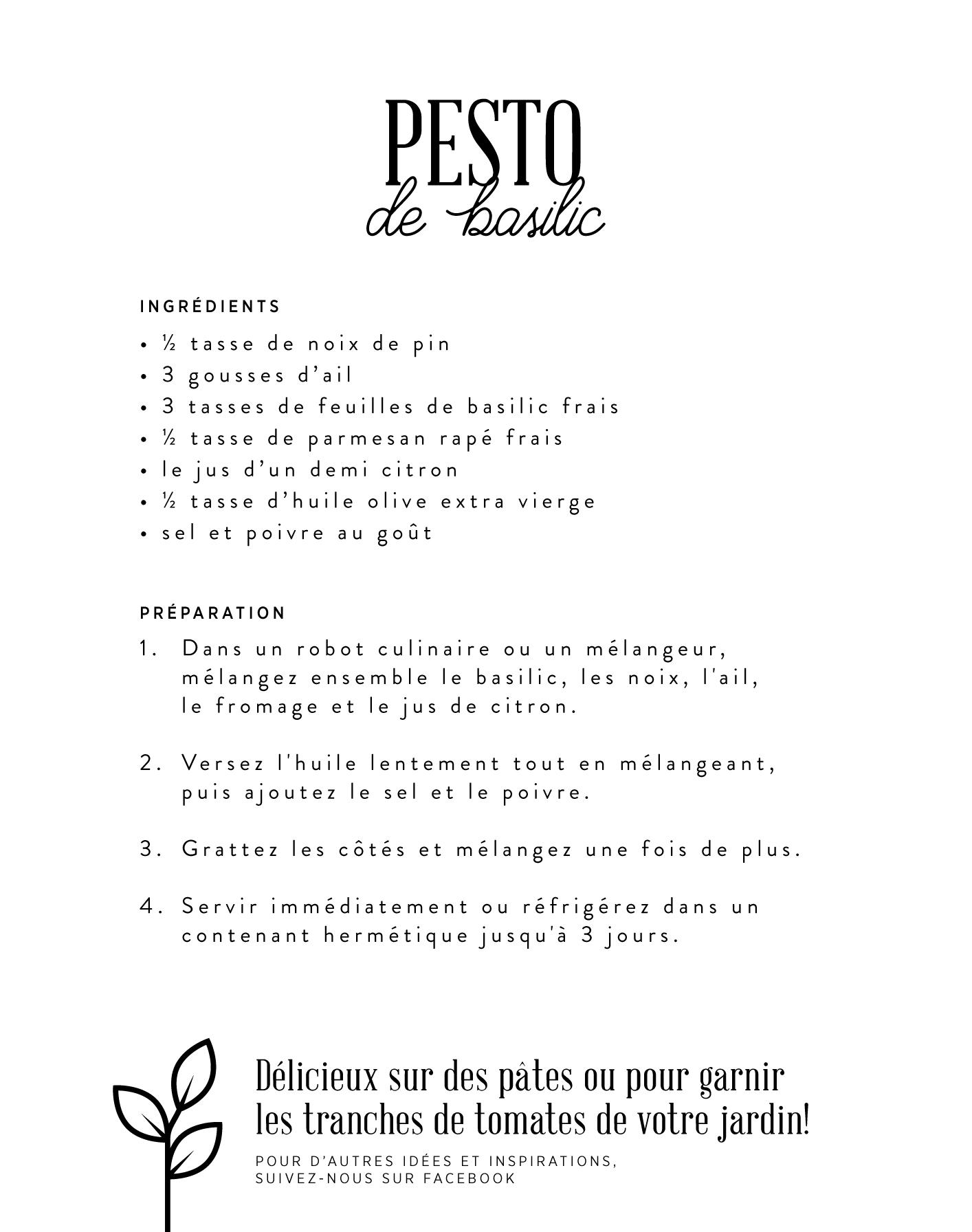 visuel-PESTO-verso-02.jpg