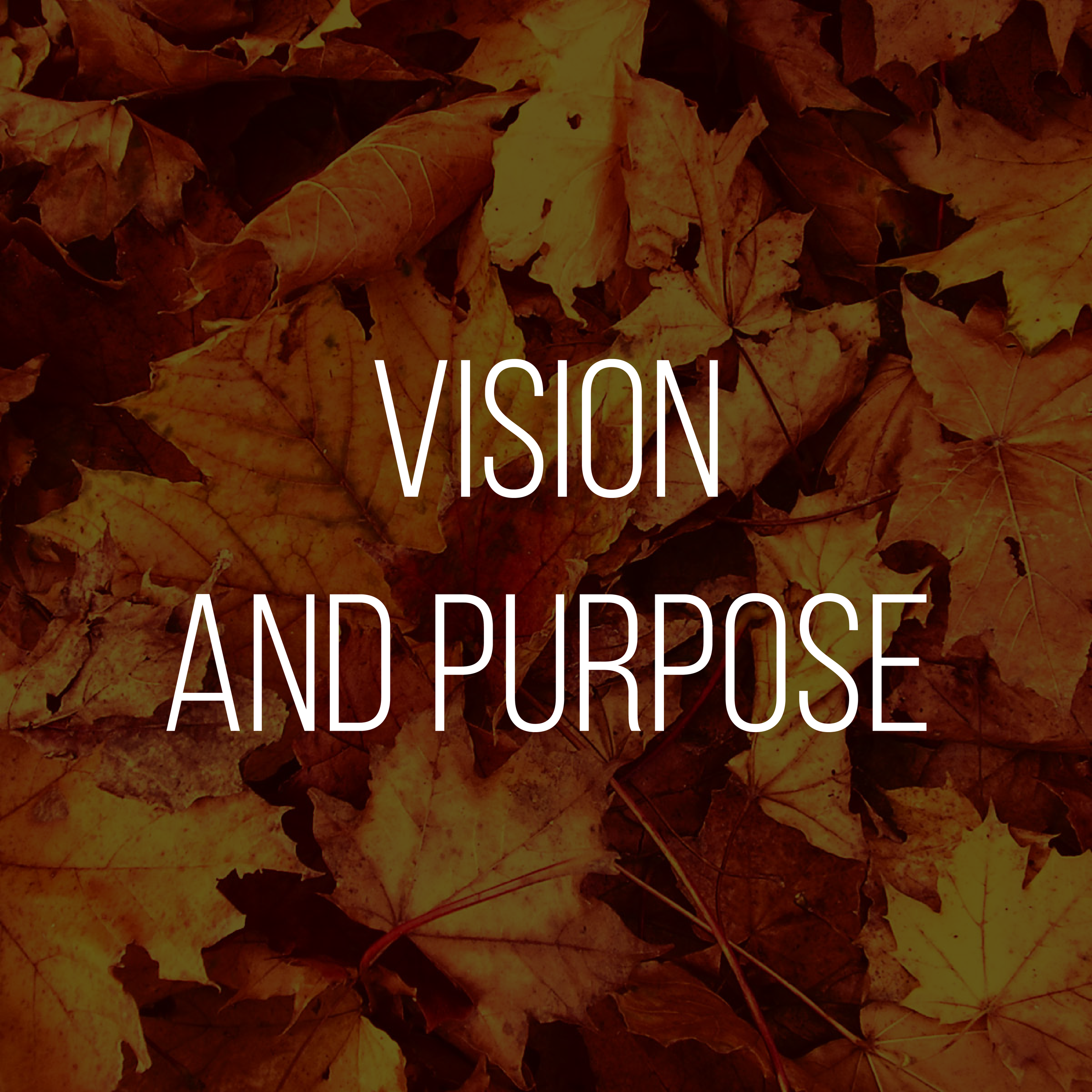 Vision and Purpose.png