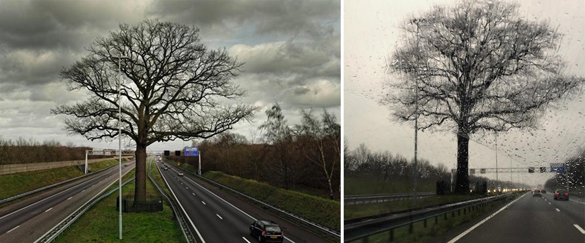 Foto links: ©Michiel Hendrickx                                                  Foto rechts:© Saskia Scheltjens