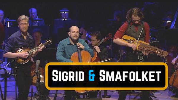 Nordic_Mandolin_symphonic orchestra _Sigrid_600.png