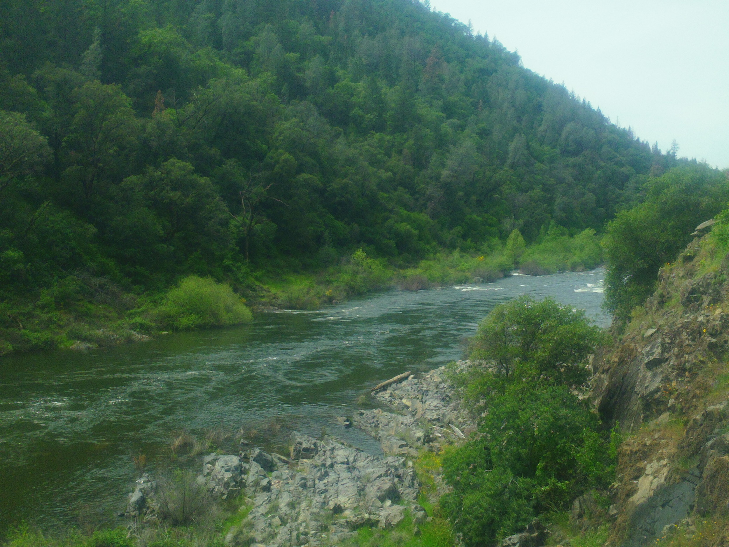 Spring on the South Fork