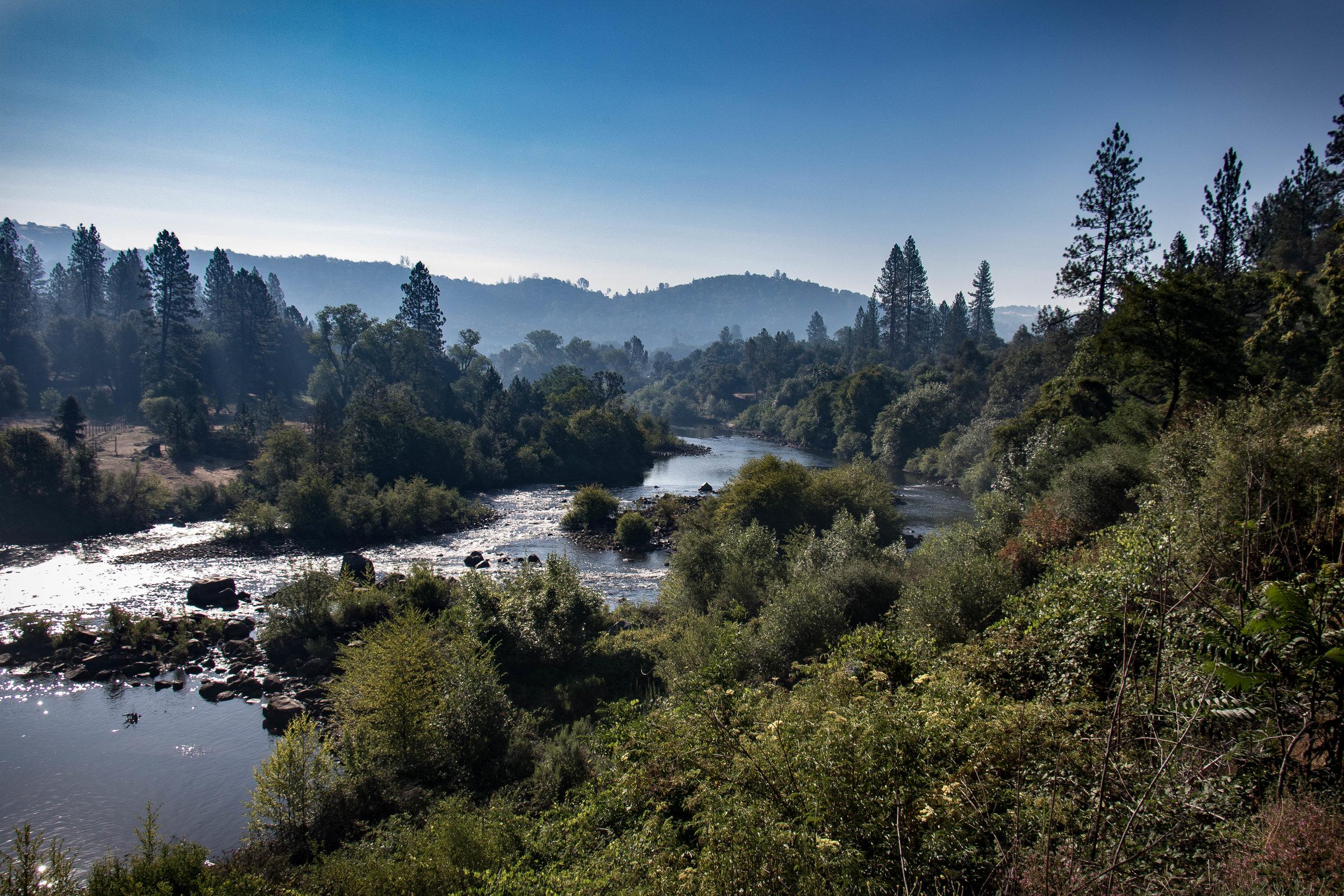 American River Scenery