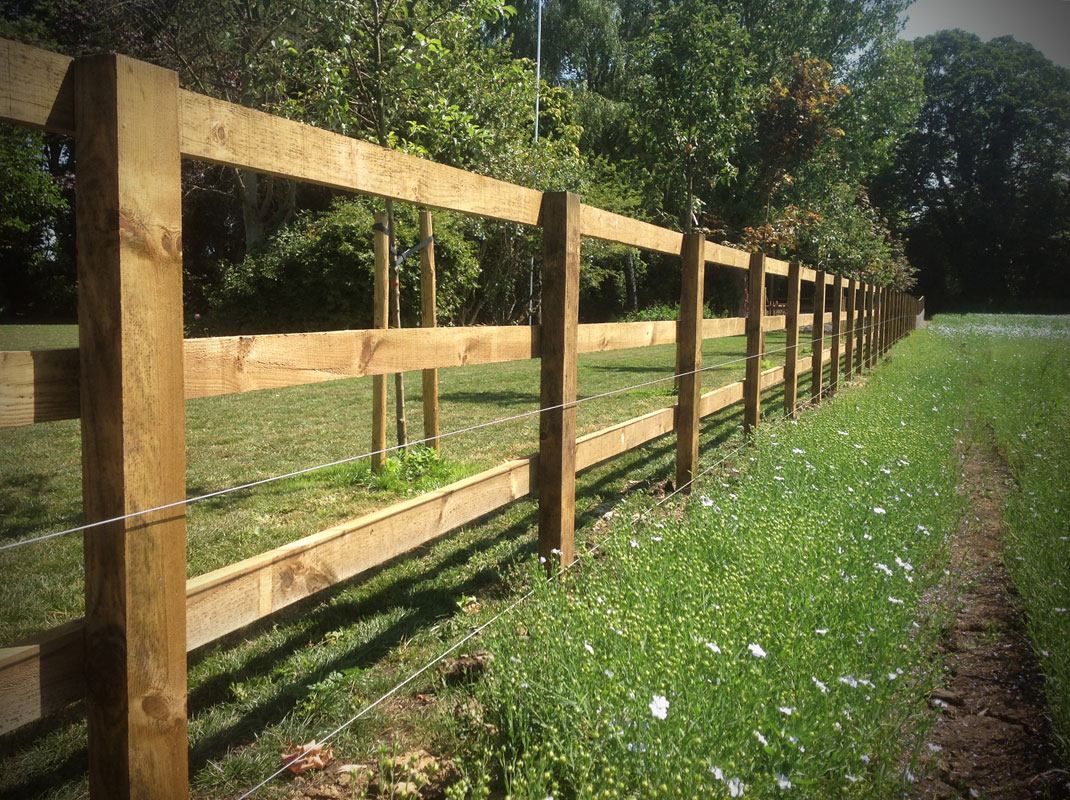 Dodd-&-Co-Agricultural-and-equine-fencing-and-construction5.jpg