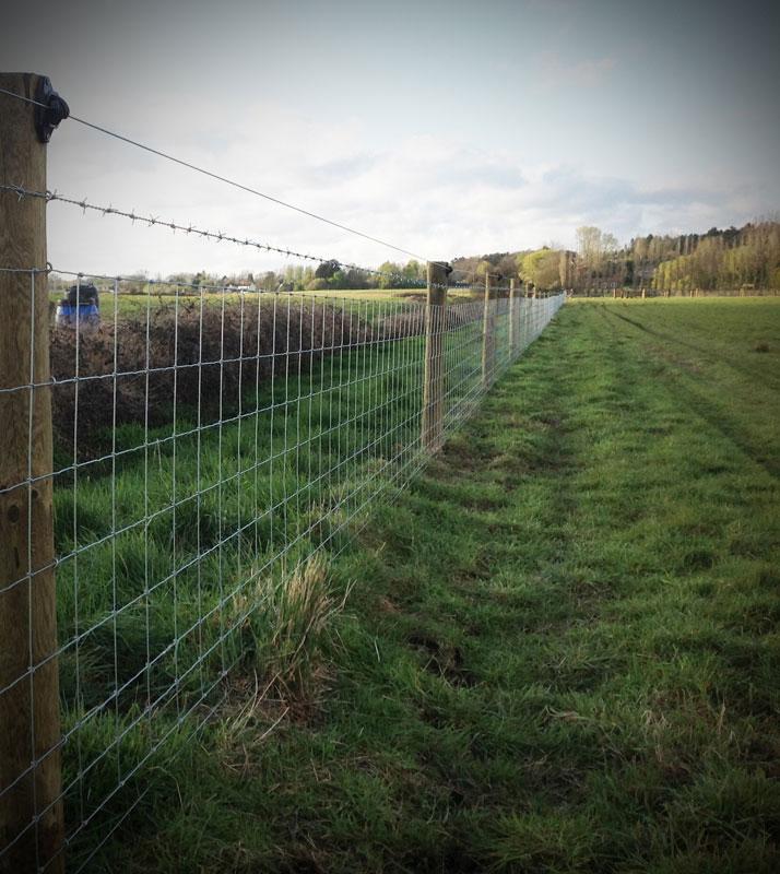 lifestock-fencing1.jpg