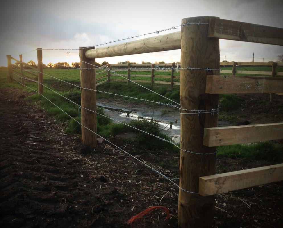 lifestock-fencing4.jpg