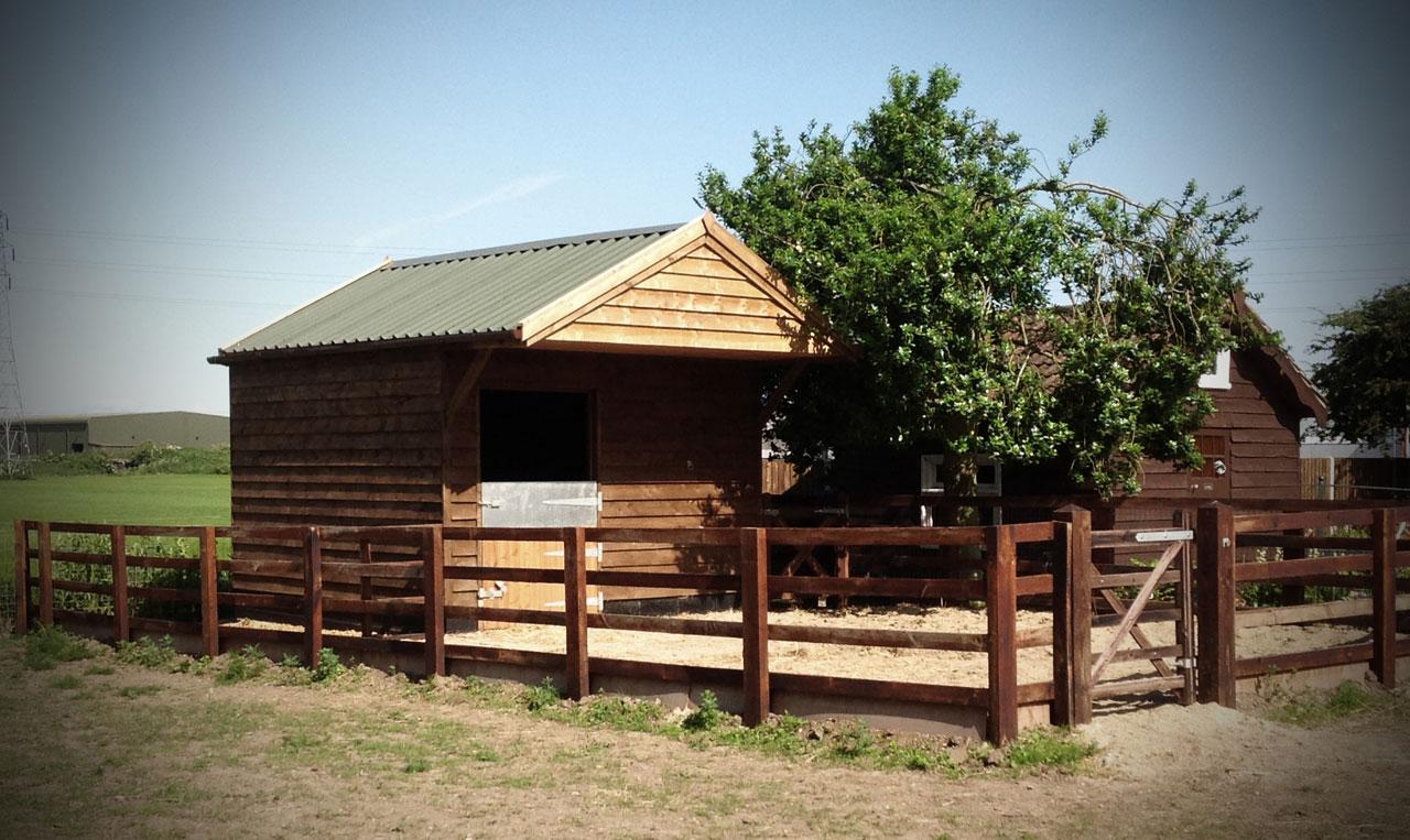 equine-facilities2.jpg