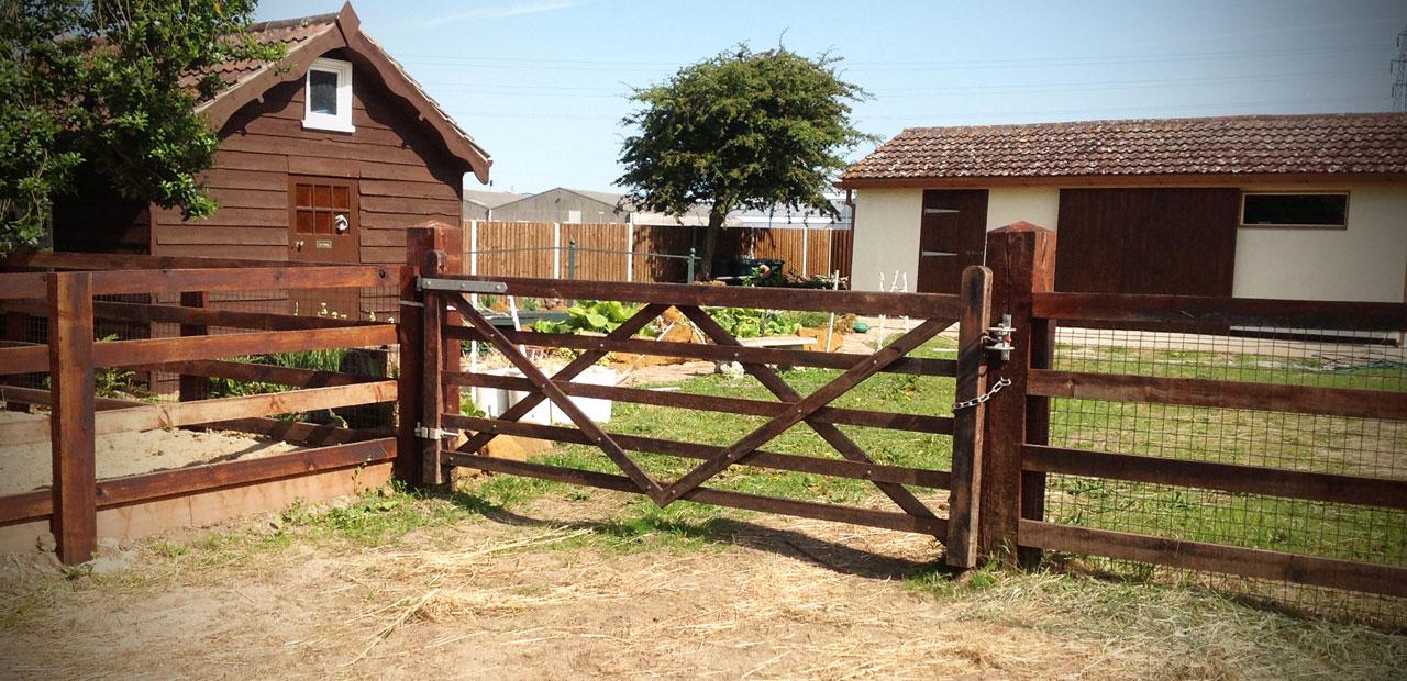 equine-facilities1.jpg
