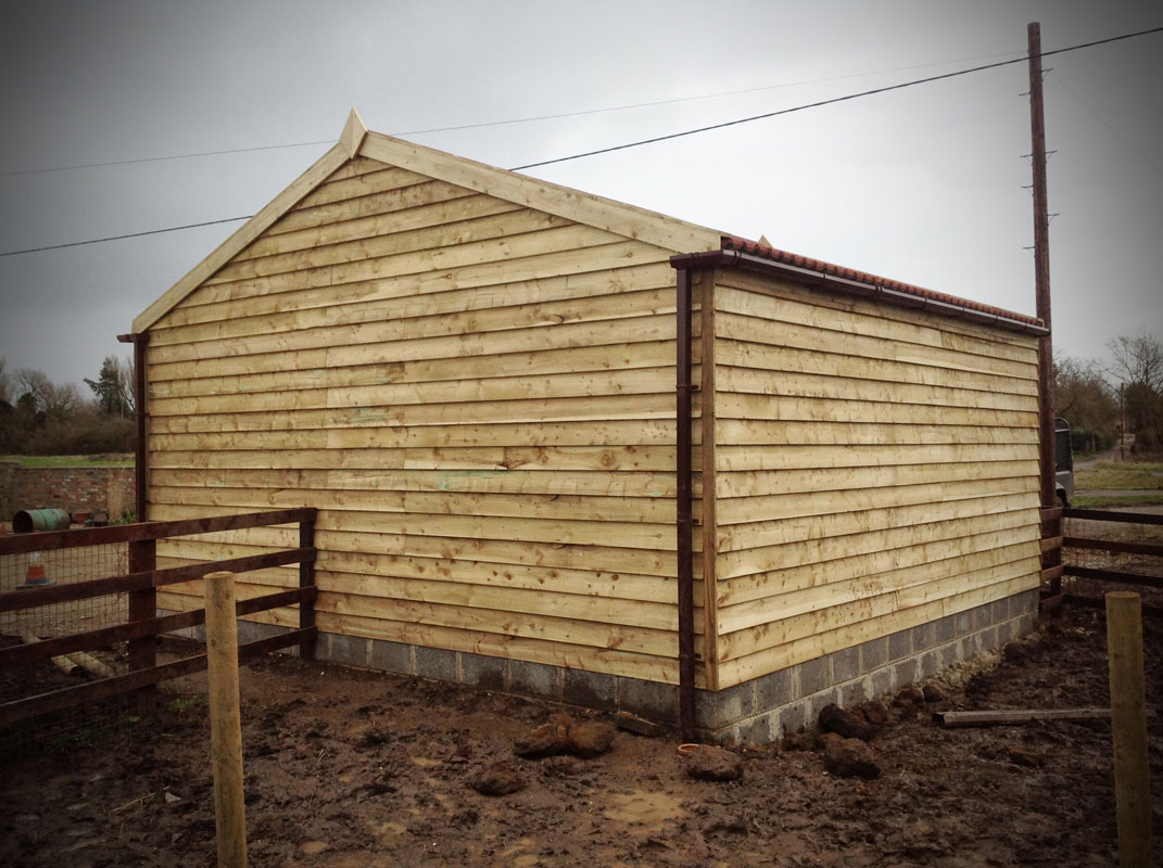 horse and-pony-accommodation3.jpg