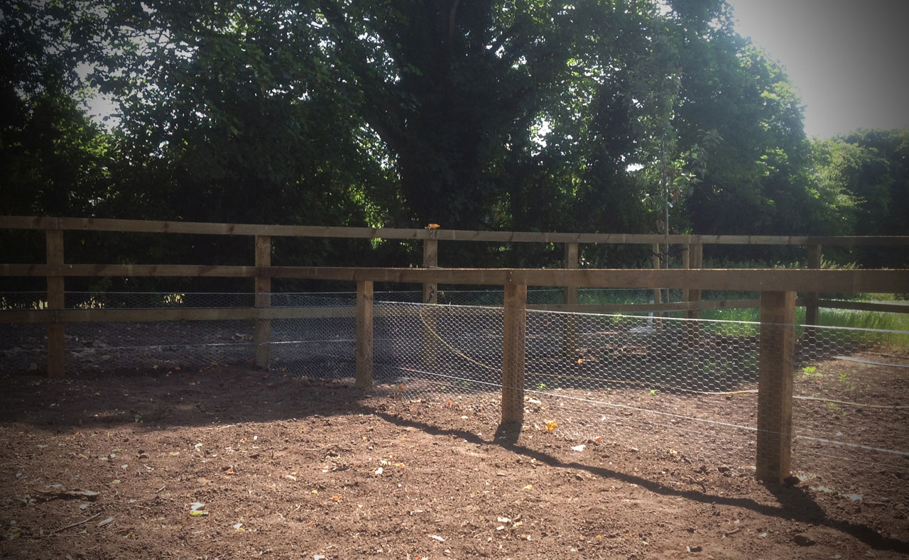 fencing8.jpg