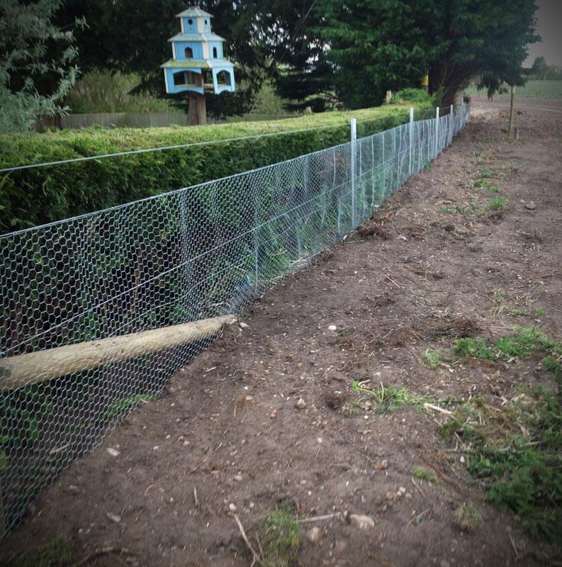 fencing14.jpg