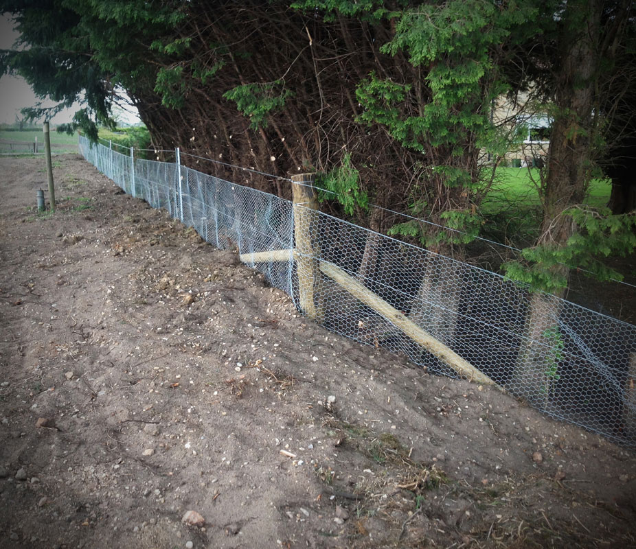 fencing15.jpg