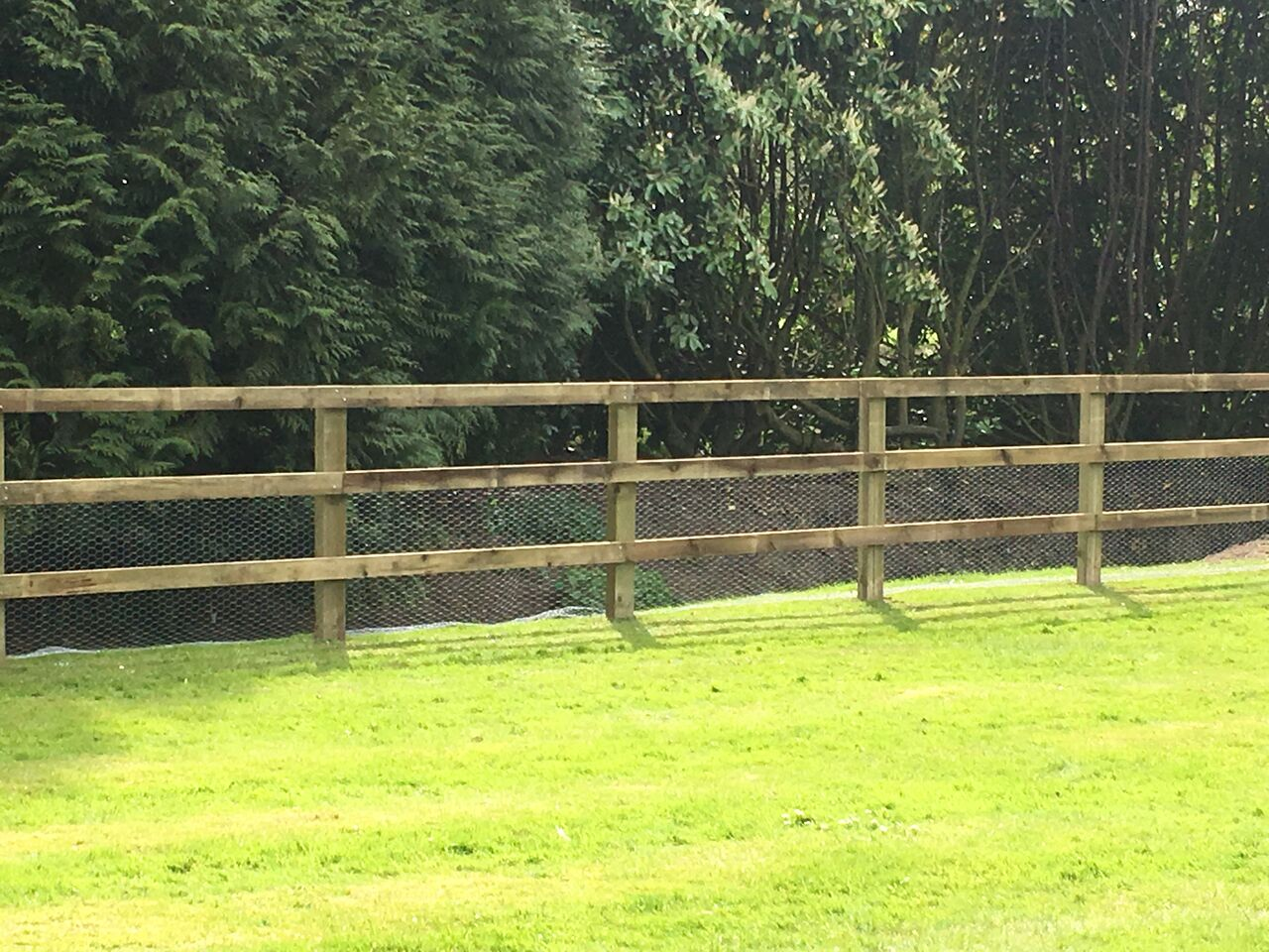 Post and rail fencing with rabbit wire to keep wildlife out