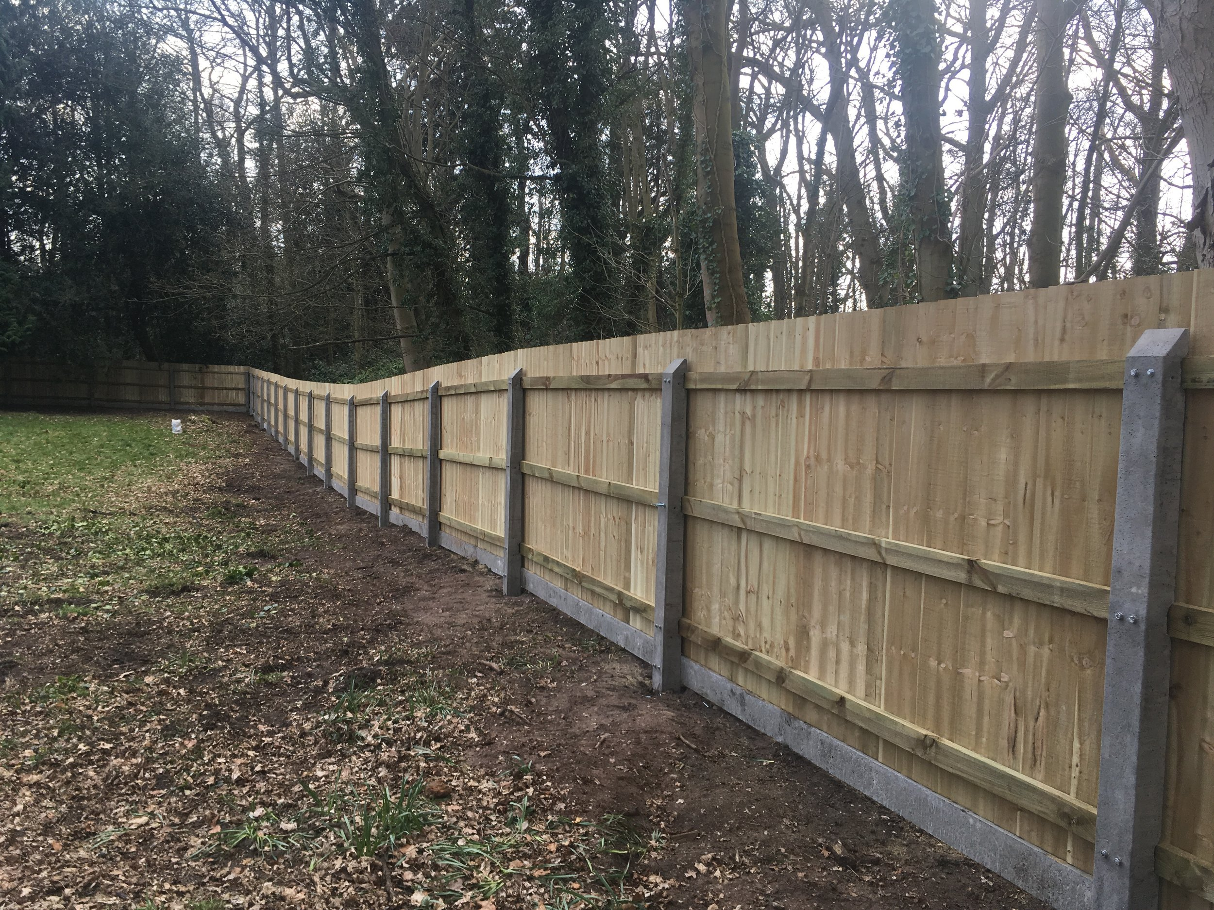 Close board panel fencing makes a simple, effective and attractive garden boundary