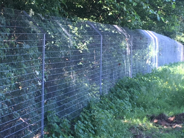 Predator fencing for PACT animal sanctuary. This fencing is designed to keep out wild animals such as otters