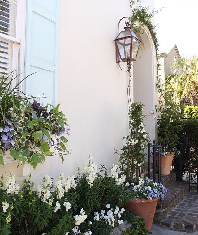 We love Sundays in Charleston 💙  #charleston #abitofcharleston #explorecharleston #doorsofcharleston #southernliving #condenasttraveler #cntraveler #travelandleisure #windowboxesofcharleston #windowboxwednesday #spring #slhomes #slpicks #traditionalhome #coastalliving