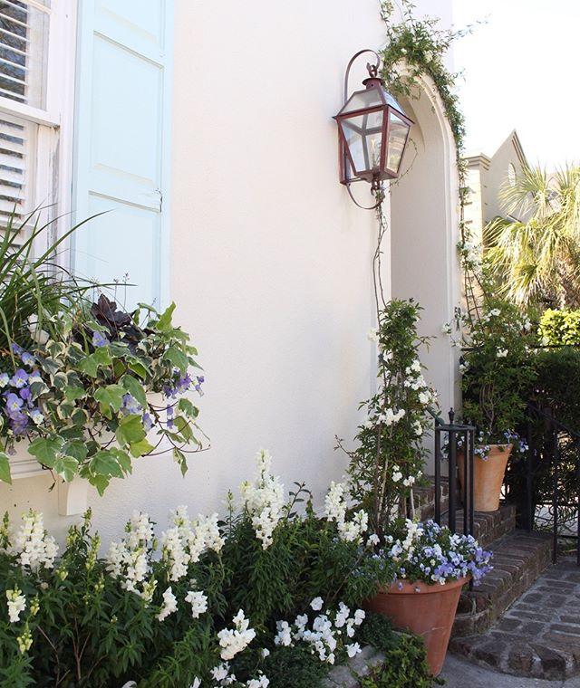 We love Sundays in Charleston 💙  #charleston #abitofcharleston #explorecharleston #doorsofcharleston #southernliving #condenasttraveler #cntraveler #travelandleisure #windowboxesofcharleston #windowboxwednesday #spring #slhomes #slpicks #traditionalhome #coastalliving