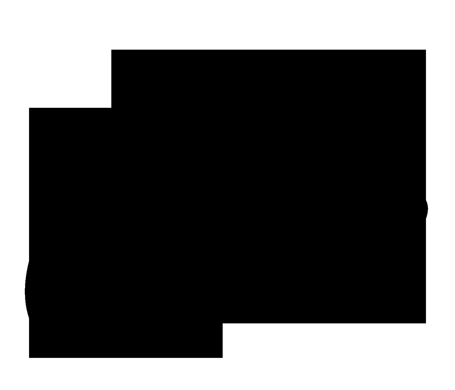 gulla-jonsdottir-press-logo-palace-costes.png