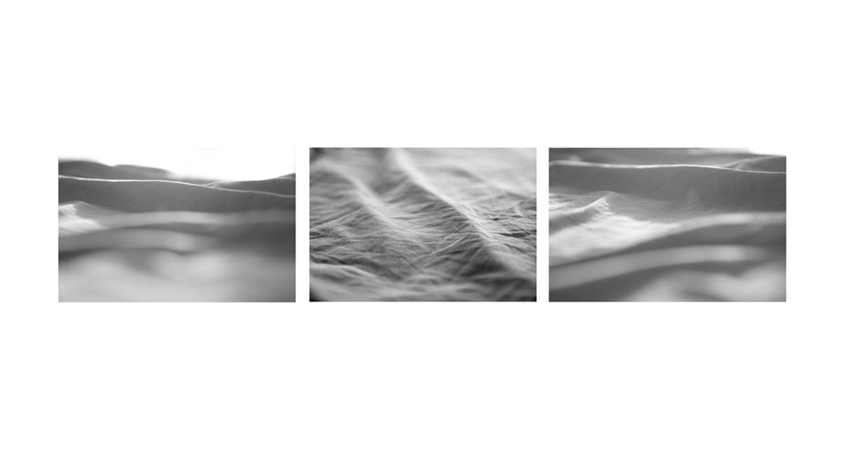 MEM OF THE SEA 2.jpg