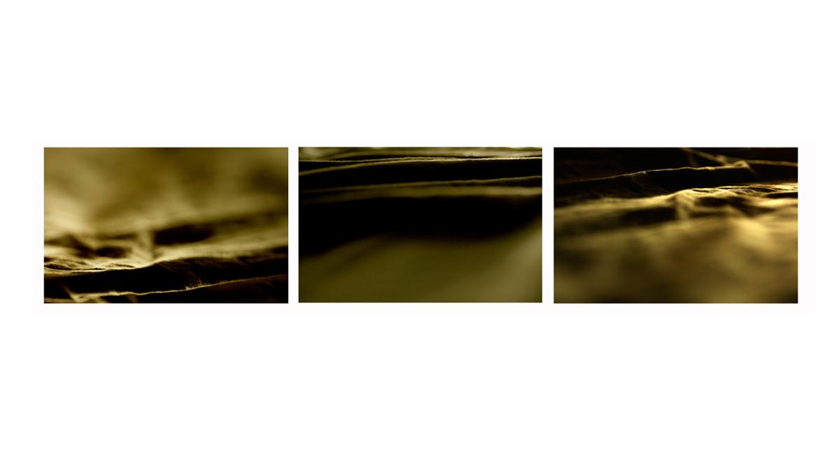 MEM OF THE SEA 4.jpg