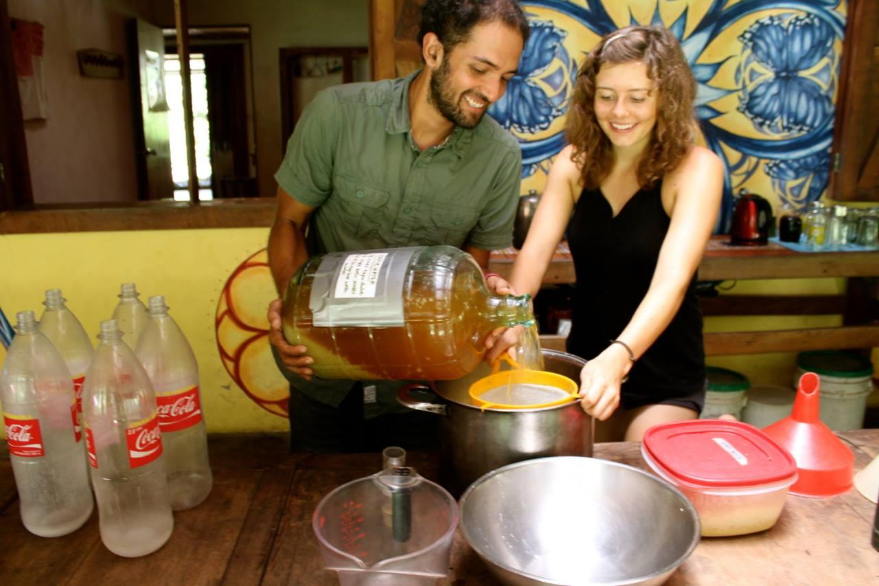 Homemade Soda Fermentation Costa Rica