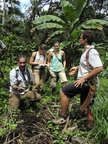 Soil Building Permaculture Costa Rica
