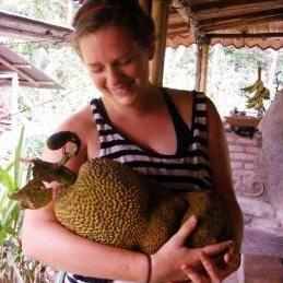 Jackfruit Permaculture Costa Rica