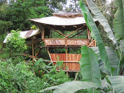 Bamboo Costa Rica