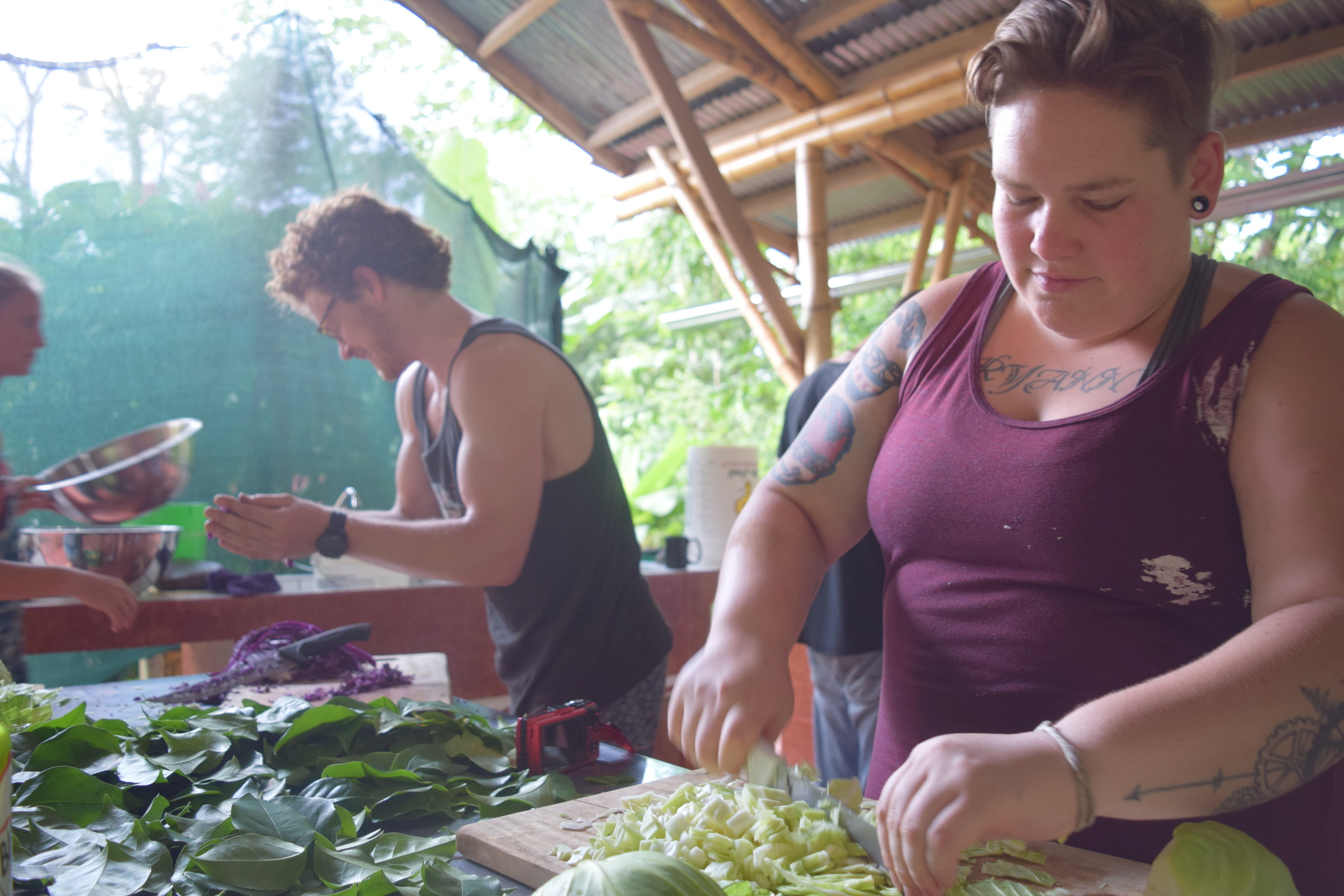 Art and Practice of Live Culture Fermentation: May 12 - 15