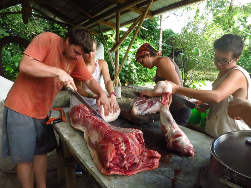 Apprentices learning how to butcher a locally raised pig