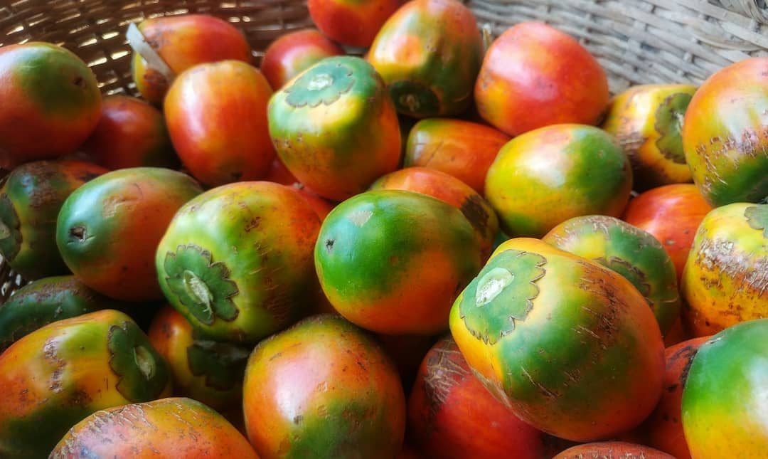 "Local ""pejibaye"" or peach palm"