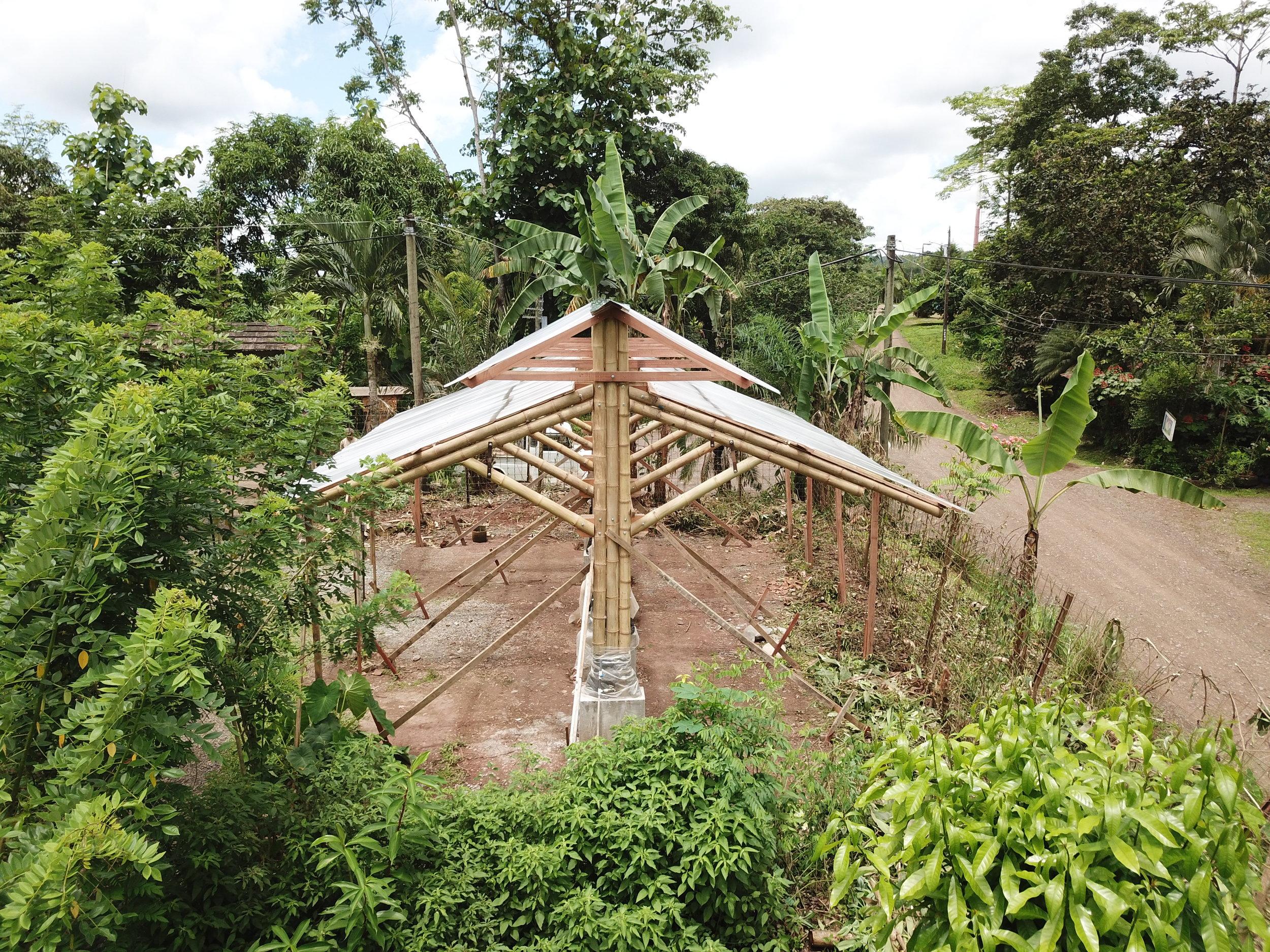 bamboo building costa rica porvenir design