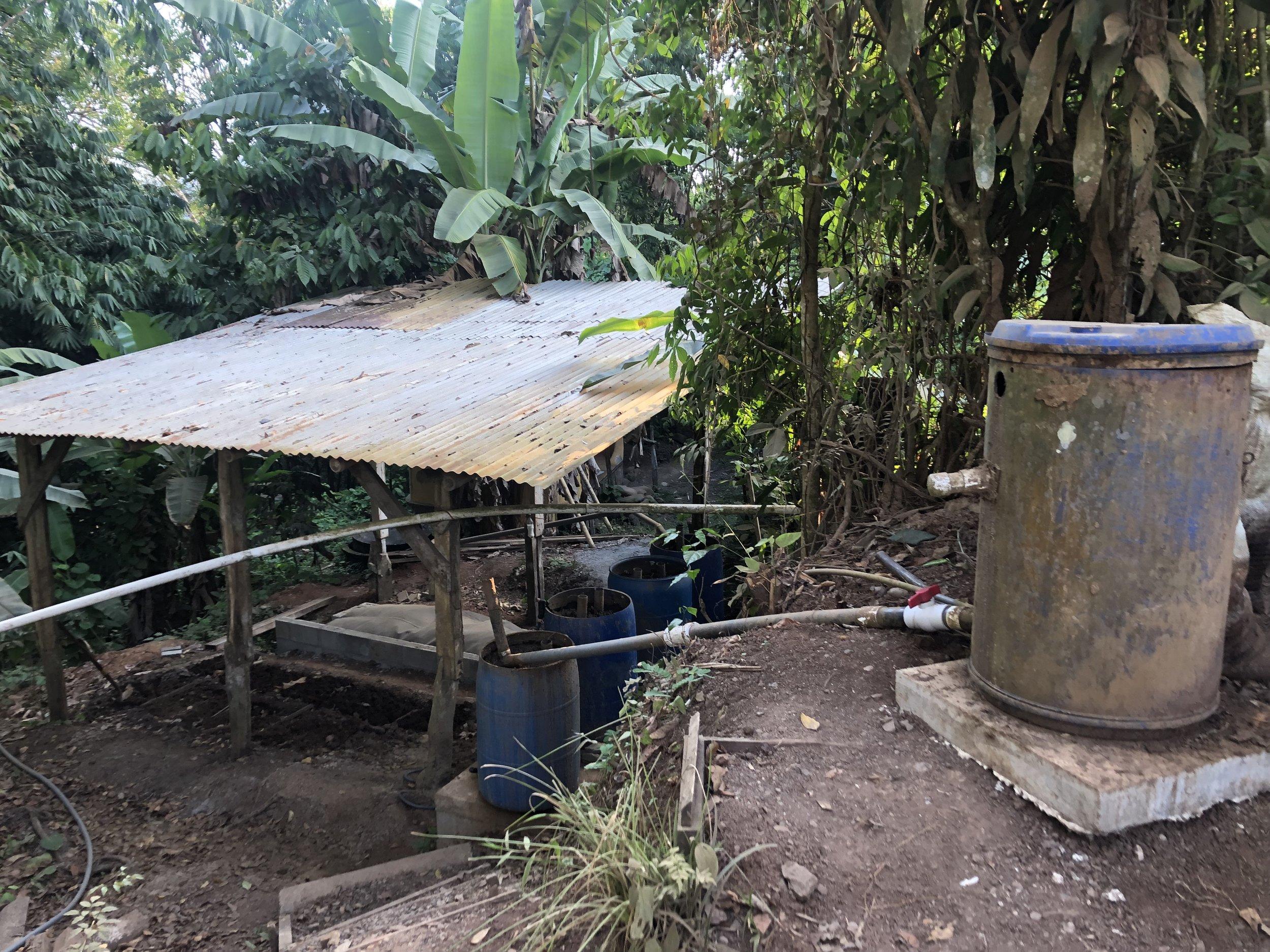 biogas alternative energy.jpeg