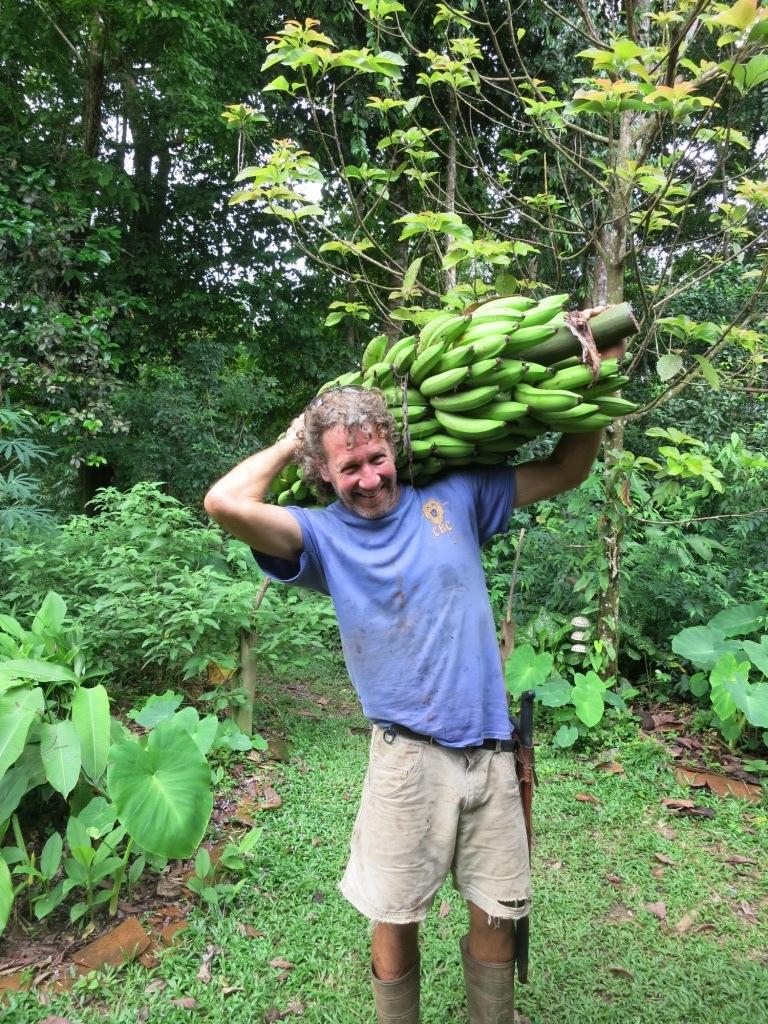 Big Bananas.JPG