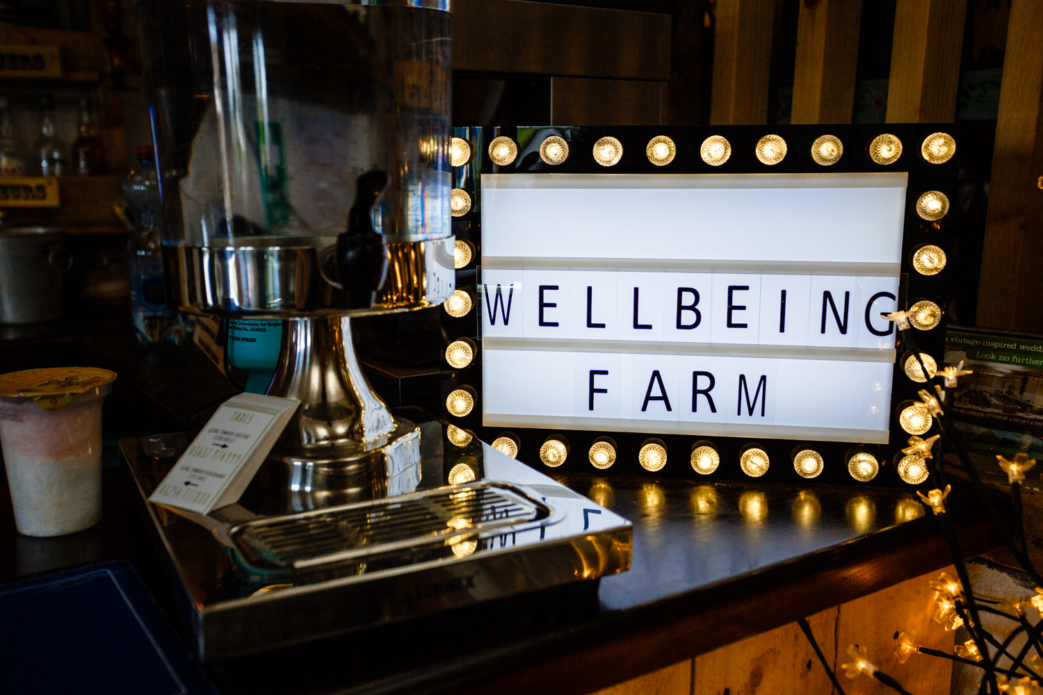 Wellbeing Farm Wedding-86.jpg