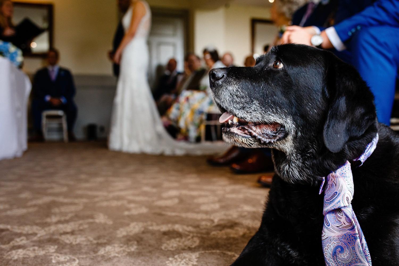 Jamie-Bekah-Sheffield-wedding-photographer-17.jpg