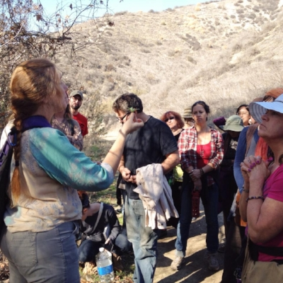 Julie leading a plant identification class in the Los Angeles mountains.