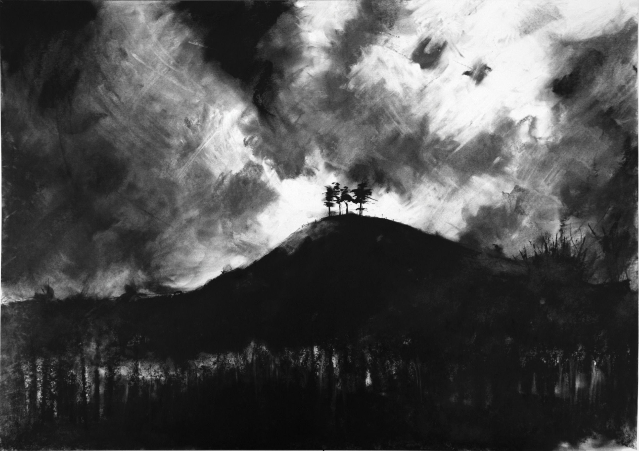 Colmer's Hill  2011 | 92 x 68 x 2.5cm Charcoal & compressed charcoal Signed  SOLD