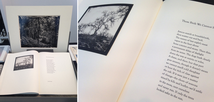 To the Wheatlight of June – Ben Nixon (photographs) and Steven Brown (poems) Edition: 50 numbered sets – 21st Editions