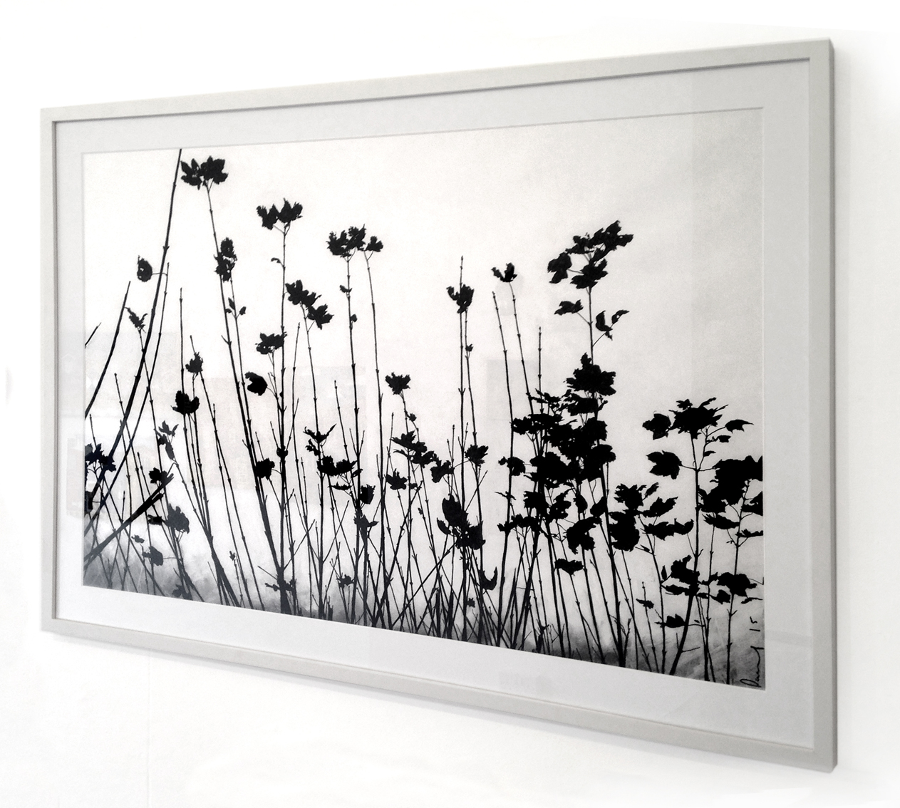 Hedgerow, Wales (framed)