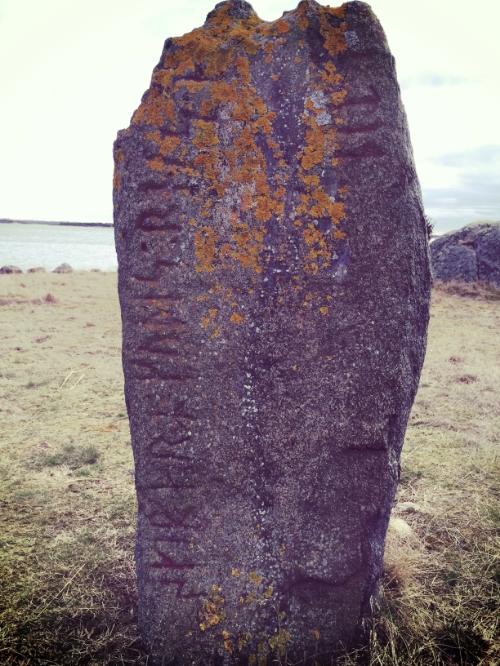 """""""Gude's skipper raised stone"""""""