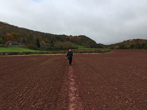 Incredible vibrancy of red clay soil