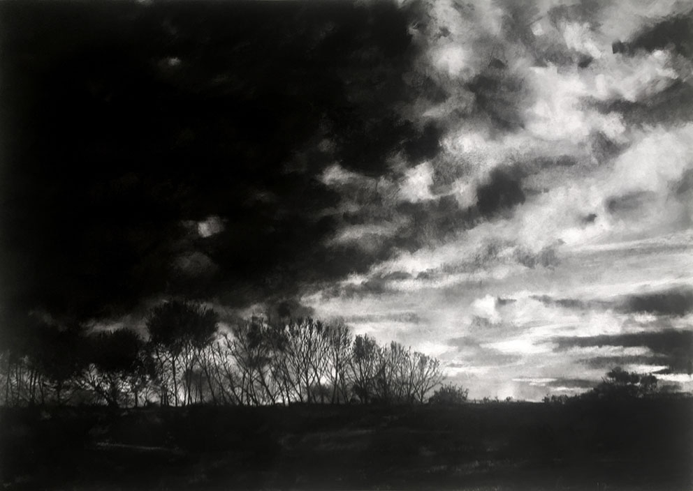 Wintertide  2017 | 84 x 60cm Charcoal & compressed charcoal Signed on front  SOLD