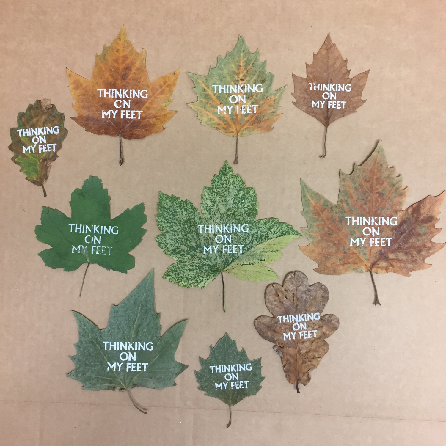 Screen printing on a variety of leaves (chosen cover leaf is top middle)