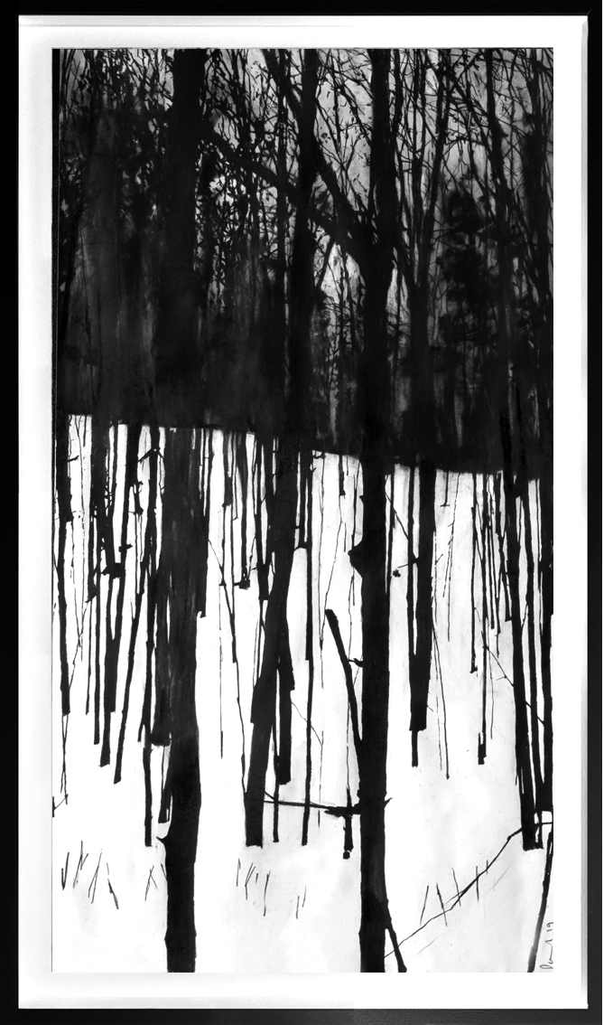 Snow Forest  2019 | 40 x 84cm Charcoal & compressed charcoal Signed on front POA