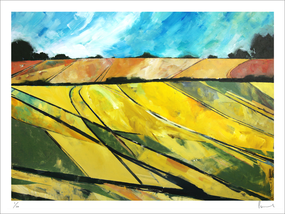 Alnmouth Fields 2017 | 62 x 82 x 3cm Acrylic on canvas Signed on front Framed  BUY PRINT