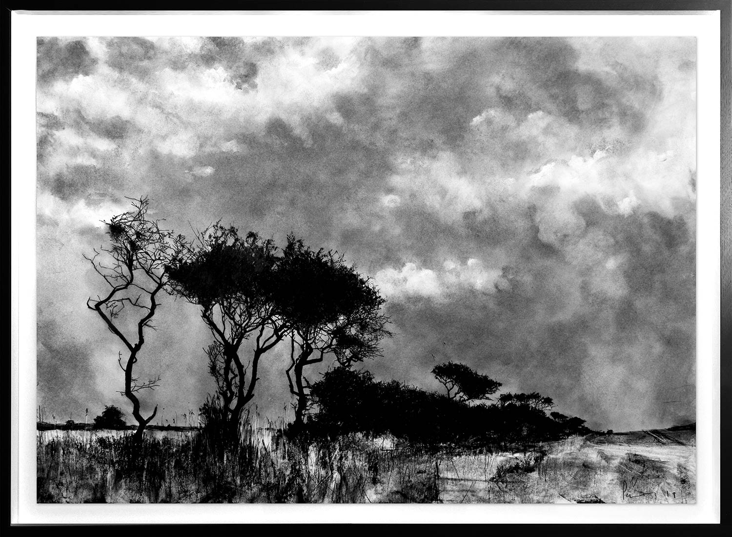 Hedgerow, between Warkworth and Alnmouth  2019 | 59.4 x 84cm Conté and charcoal Signed  POA