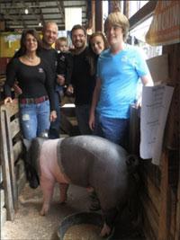 4h-pigs-for-homeless-shelter.jpg