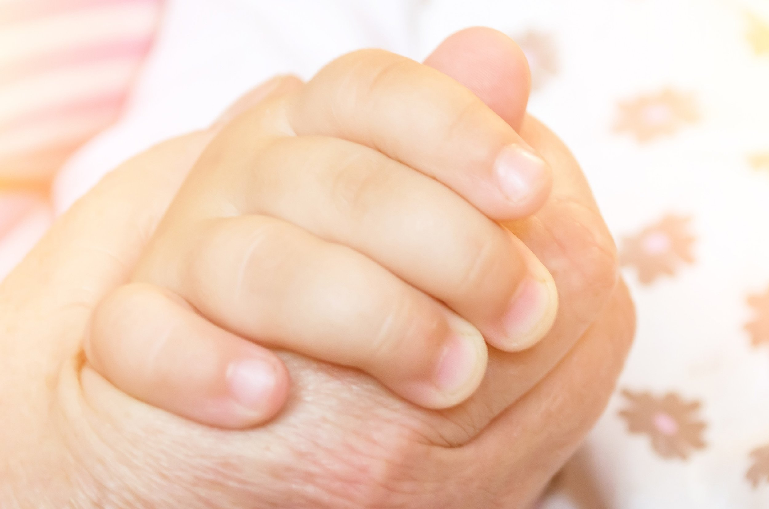 toddler hand.jpg