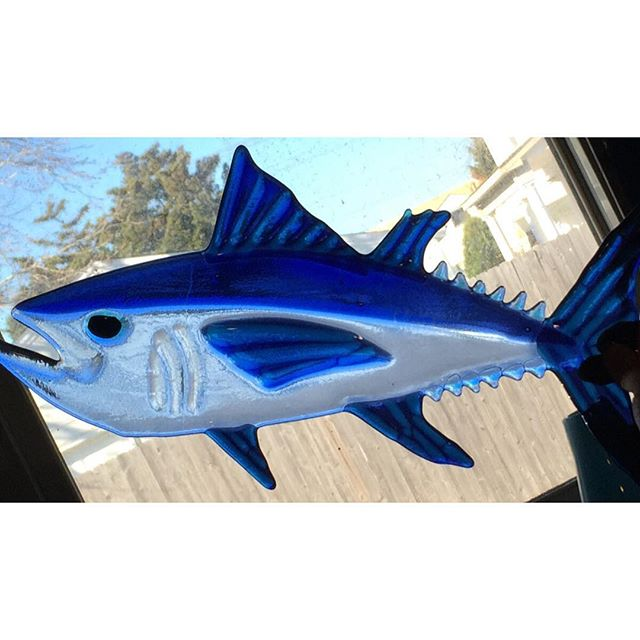 """Big eye tuna fused glass. Approximate length is 15"""""""